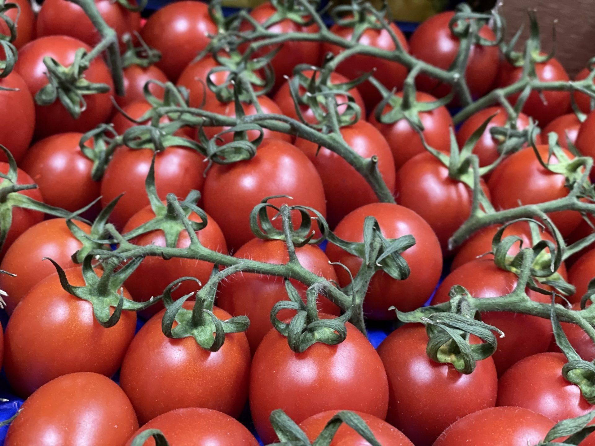 Pachino Cherry Tomatoes